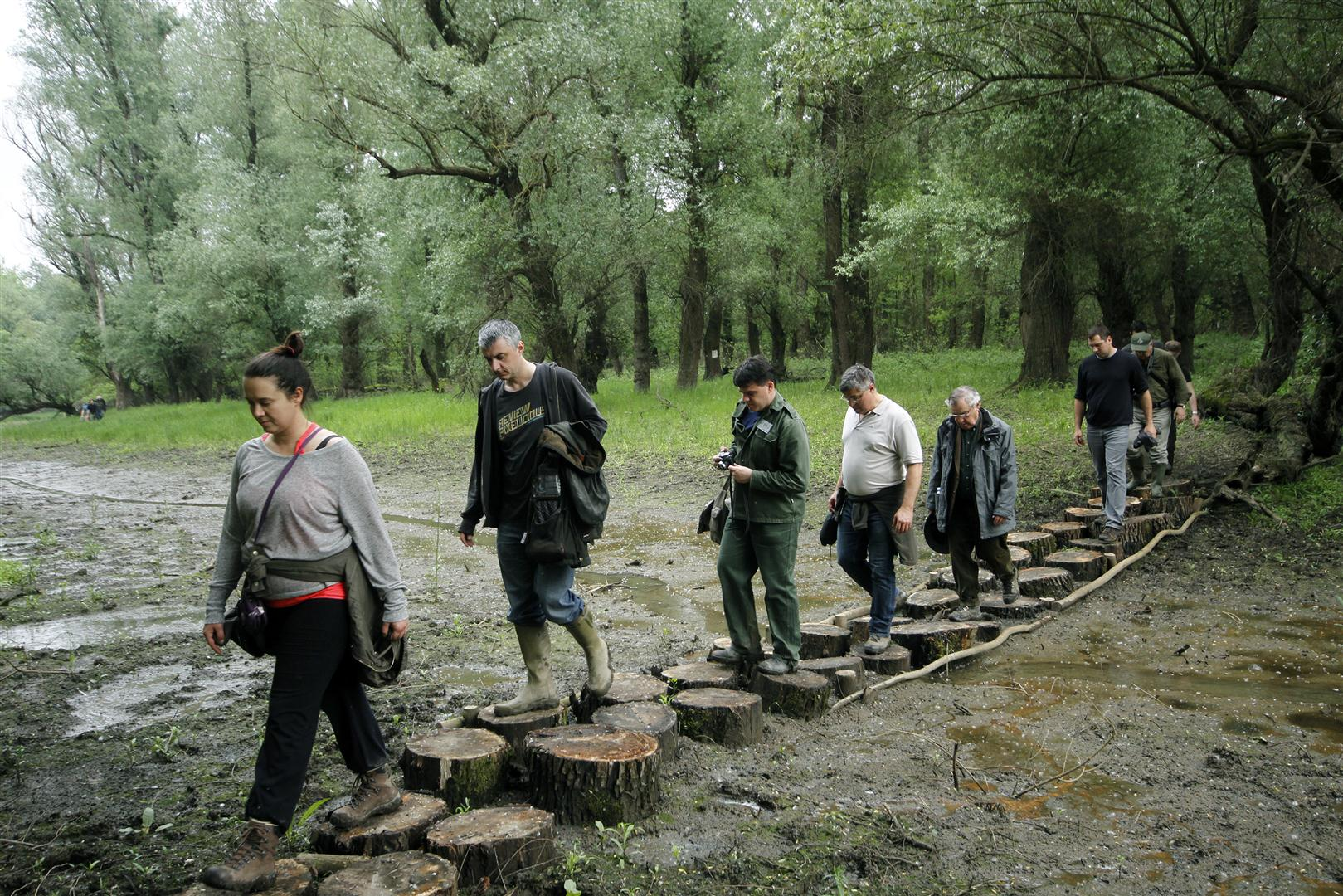 like stepping stones: chain of protected areas along Danube create ecologic corridor